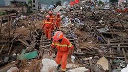 Ứng dụng cảnh báo sớm động đất dành cho iPhone và điện thoại Android