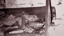 """Lăng mộ Từ Hy thái hậu đã bị """"Tôn Ma tử"""" đào trộm như thế nào?"""