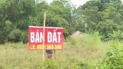 Phú Thọ: Chi nhánh Ngân hàng MB rao bán đất xây dựng phòng giao dịch