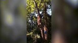 """Video cô gái mặc bikini đang đu dây xuống sông thì ngã """"dập mặt"""""""