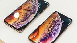 Đâu là màu sắc mà bạn yêu thích nhất trên iPhone mới?