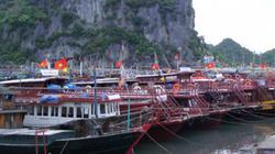 Tin mới nhất về bão số 5: Quảng Ninh không cho tàu thuyền ra khơi