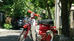 Ngắm huyền thoại Honda Cub 40 năm vẫn mới, đẹp lung linh