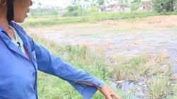 Nghệ An:Làng quê bị ô nhiễm nặng từ nước thải làng nghề bún, bánh