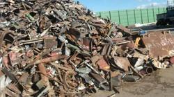 Lo Việt Nam thành núi rác, Kiểm toán muốn soi việc quản lý nhập khẩu phế liệu