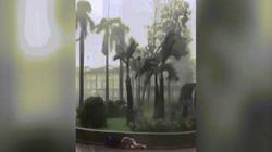 Video: Hai cha con bị siêu bão Mangkhut quật ngã, thổi bay ở Hong Kong
