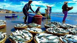 Nông nghiệp 9 tháng: Xuất khẩu thủy sản tăng kỷ lục 6,35 tỷ USD