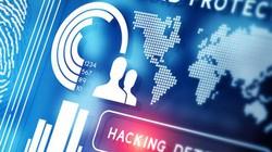 Phát hiện hơn 1.000 website thu thập thông tin người dùng Việt Nam