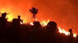 H'Hen Niê, Đàm Vĩnh Hưng cầu nguyện cho người dân miền Trung gồng mình chống cháy rừng
