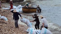 Vùng đất dân quanh năm ra biển lặn mò toàn những loài sò ngon