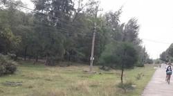 Vụ cán bộ được cấp đất rừng: Quy trách nhiệm nhiều lãnh đạo chủ chốt