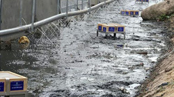 """Nóng 24h qua: Con số cho thấy hiệu quả làm sạch sông Tô Lịch của """"bảo bối"""" của Nhật Bản"""