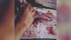 """Indonesia: Mua cá ngoài chợ, về mổ bụng thấy """"bàn tay hủy diệt"""" của con người"""