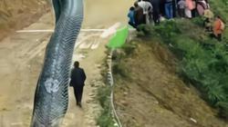 """Bức ảnh """"rồng khổng lồ dài 120 mét gây động đất"""" khiến mạng xã hội TQ hoảng loạn"""