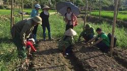 Sơn La: Cầm tay chỉ việc giúp dân có cây đầy trái, gà đầy vườn