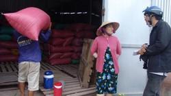 HTX nợ nông dân 11 tỷ đồng: Chính quyền hối thúc trả nợ