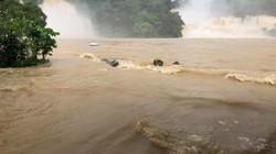 Cao Bằng: Lũ bủa vây, thác Bản Giốc chìm trong nước lũ