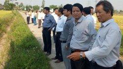 Hội Nông dân Đà Nẵng: Giám sát, hỗ trợ nông dân bị thu hồi đất