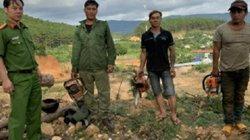Bắt quả tang 3 đối tượng dùng cưa máy phá rừng thông