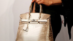 Chiếc túi đặc biệt giá hơn 11 tỷ mà giới nhà giàu tranh nhau mua