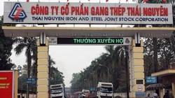 """""""Ôm"""" nợ xấu công ty liên quan ông Trần Bắc Hà, Gang Thép Thái Nguyên kinh doanh bết bát"""