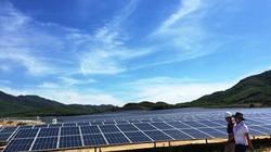 Khánh thành dự án điện mặt trời lớn nhất ở Khánh Hòa