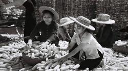 Chiến thắng Điện Biên Phủ trên không: Mỹ cay đắng rút khỏi Việt Nam