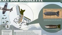 Lazy Dog - Mưa đạn đáng sợ trên chiến trường Việt Nam