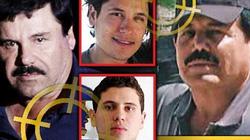 """Trùm ma túy El Chapo ngồi tù vĩnh viễn, hai con trai sẽ bị """"chiến hữu"""" thanh trừng?"""