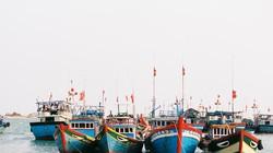 Hội Nghề cá Việt Nam kịch liệt phản đối Trung Quốc xâm phạm Biển Đông