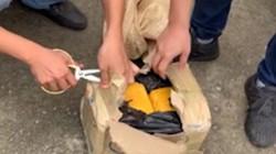 Bắt vụ vận chuyển 5kg ma túy từ Điện Biên về Hà Nội
