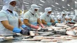"""Thuế suất 0%, doanh nghiệp xuất khẩu thủy sản sang EU """"ăn cả"""""""