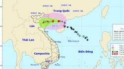 Bão số 3 diễn biến bất thường, Chủ tịch Hà Nội ký công điện khẩn