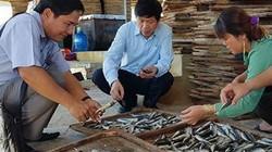 Ế nhiều quá, Chủ tịch, Bí thư cũng phải đi bán cá mực, cá nục khô