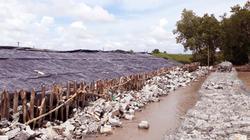 Cà Mau: Sóng lớn kỷ lục, nguy cơ vỡ đê biển Tây