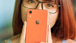 iPhone XR và iPhone 8 Plus: Bạn thích tai thỏ hiện đại hay phím home màn hình truyền thống?