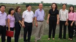 Vai trò Hội Nông dân trong xây dựng nông thôn mới, kinh tế tập thể