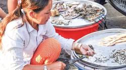 Lũ chưa về, cá nước ngọt khan hiếm, giá cao, cá cóc tới 80 ngàn/ký
