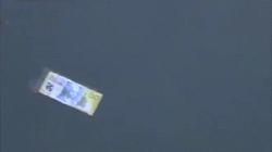 Video: Cậu bé trên đường đi học, phát hiện hàng loạt tờ tiền trôi trên sông ở Úc
