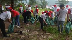 Đà Nẵng: Hơn 800 tình nguyện viên chung tay dọn sạch rác bãi biển