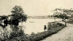 Ký ức Thăng Long - Hà Nội (Kỳ 7): 'Đường Cổ Ngư xưa chầm chậm bước ta về…'