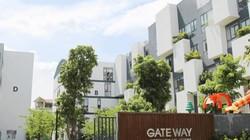 Trường quốc tế tại Việt Nam được quy định như thế nào?