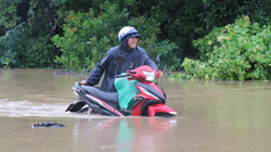 Đắk Lắk: Hàng ngàn ha hoa màu, hàng trăm nhà cửa chìm trong nước