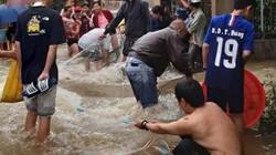 Lâm Đồng: Sau mưa lớn, dân phố ôm rổ, vợt, bu gà... ra đường bắt cá