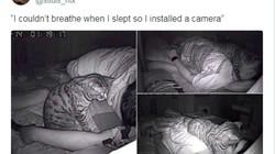 Đặt camera phòng ngủ, chàng trai phát hiện nguyên nhân khiến anh khó thở hằng đêm