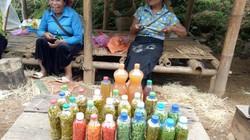 """Độc đáo chợ ớt ngâm """"hút"""" khách qua đường ở Sơn La"""