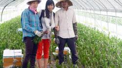 Xuất khẩu lao động nông nghiệp:Hỗ trợ cho lao động nghèo