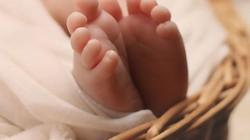 Bé 2 tuổi tử vong do ngộ độc rượu trong sữa mẹ