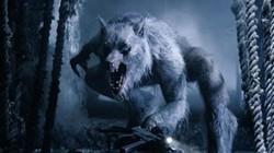 Những lần xuất hiện của người sói được ghi nhận trong lịch sử thế giới