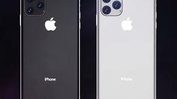 Một lượng lớn chi tiết iPhone 11 được nhân viên Foxconn tiết lộ